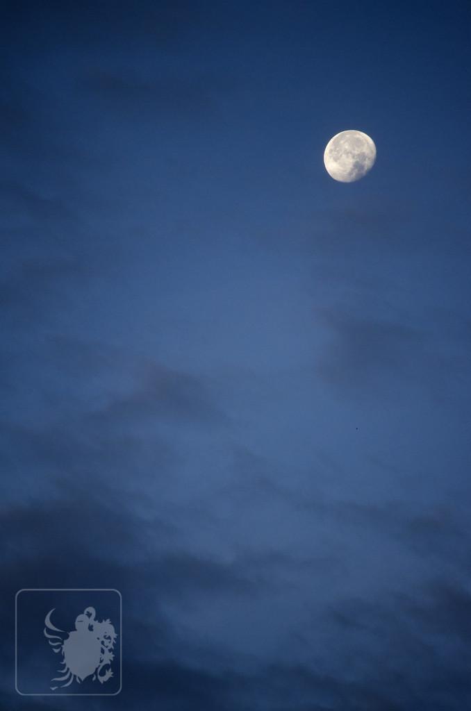 The moon illuminates the way.